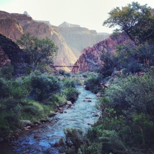 View from Phantom Ranch