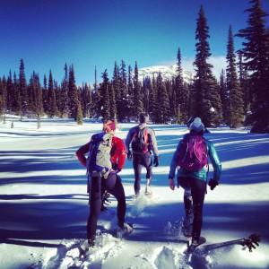 Snowshoe Running at Garibaldi