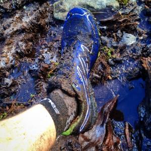 Muddy Fall.