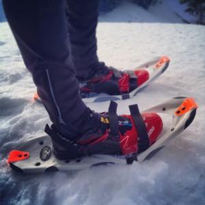 Dion Snowshoes