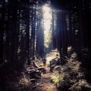 North Shore Trail Running