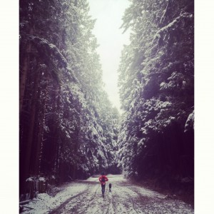 Running Up Mountain Highway