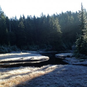Cold day on Mt. Seymour